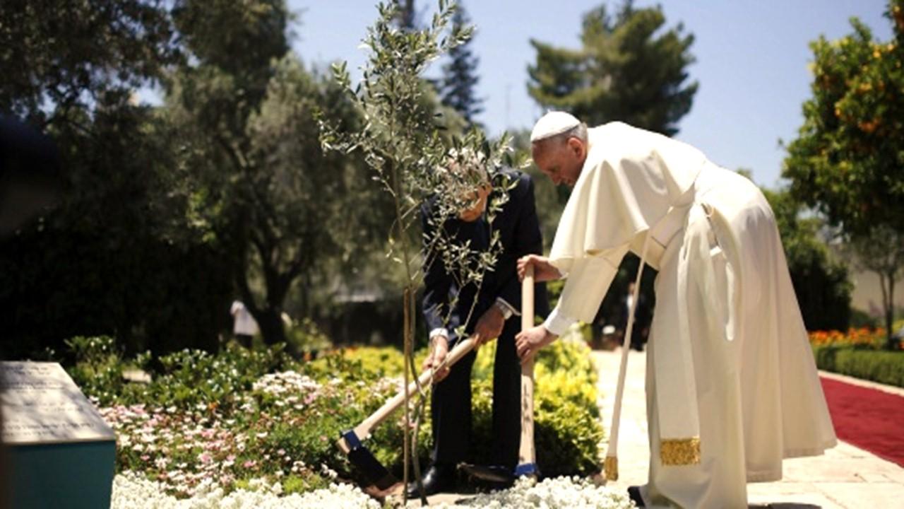 """En Villavicencio nacerá el """"Bosque de Reconciliación Papa Francisco"""""""